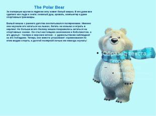 The Polar Bear За полярным кругом в ледяном иглу живет белый мишка. В его до