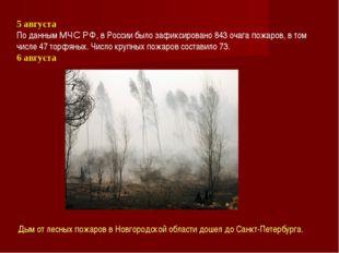 5 августа По данным МЧС РФ, в России было зафиксировано 843 очага пожаров, в
