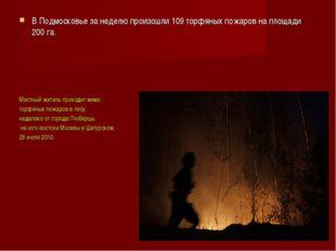 В Подмосковье за неделю произошли 109 торфяных пожаров на площади 200 га. Мес