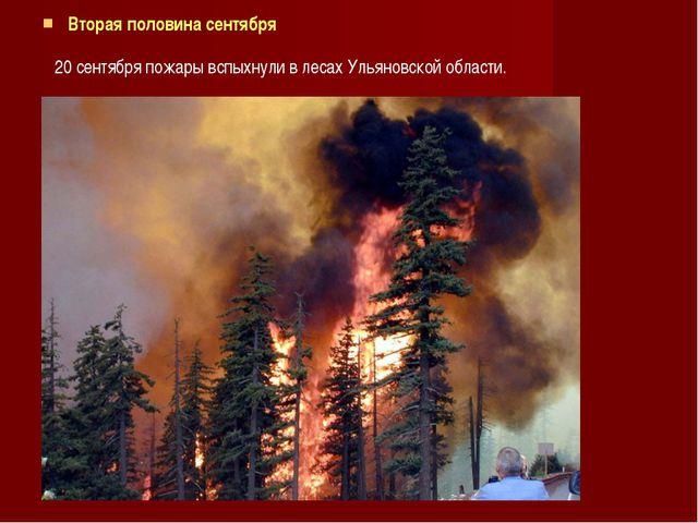 Вторая половина сентября 20 сентября пожары вспыхнули в лесах Ульяновской обл...