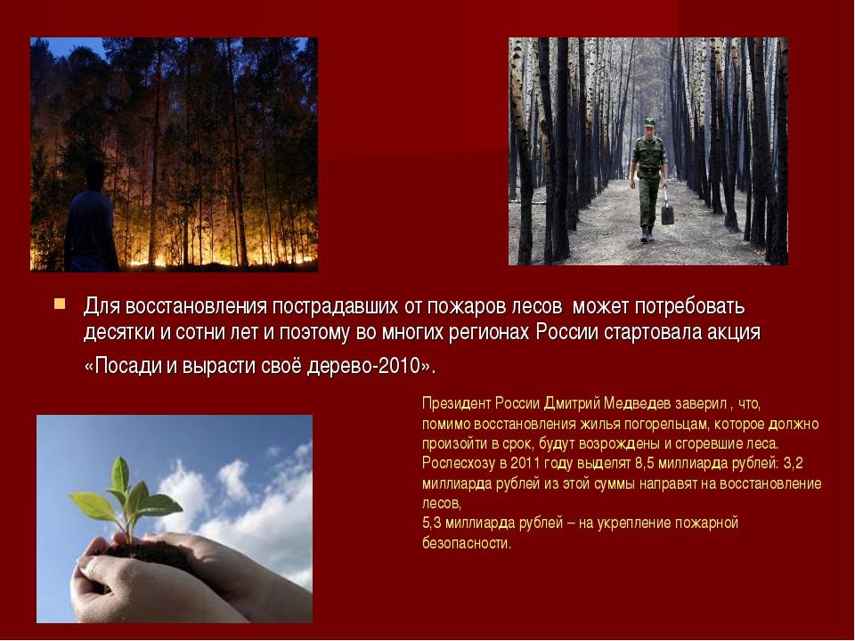 Для восстановления пострадавших от пожаров лесов может потребовать десятки и...