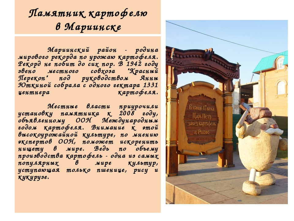 Памятник картофелю в Мариинске  Мариинский район - родина мирового рекорда...