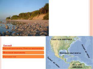 Мексикан шығанағы Атлант мұхиты Оңтүстік АМЕРИКА Солтүстік АМЕРИКА Тынық мұхиты