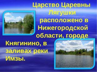 Царство Царевны Лягушки расположено в Нижегородской области, городе Княгинин