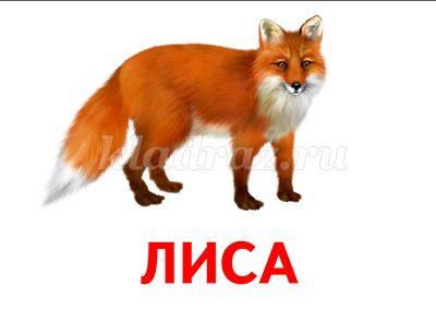 hello_html_m5f2abc9c.jpg
