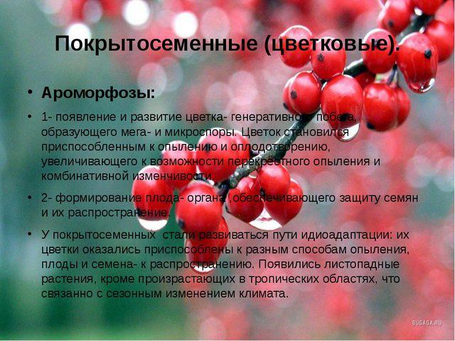 Покрытосеменные (цветковые). Ароморфозы: 1- появление и развитие цветка- гене...