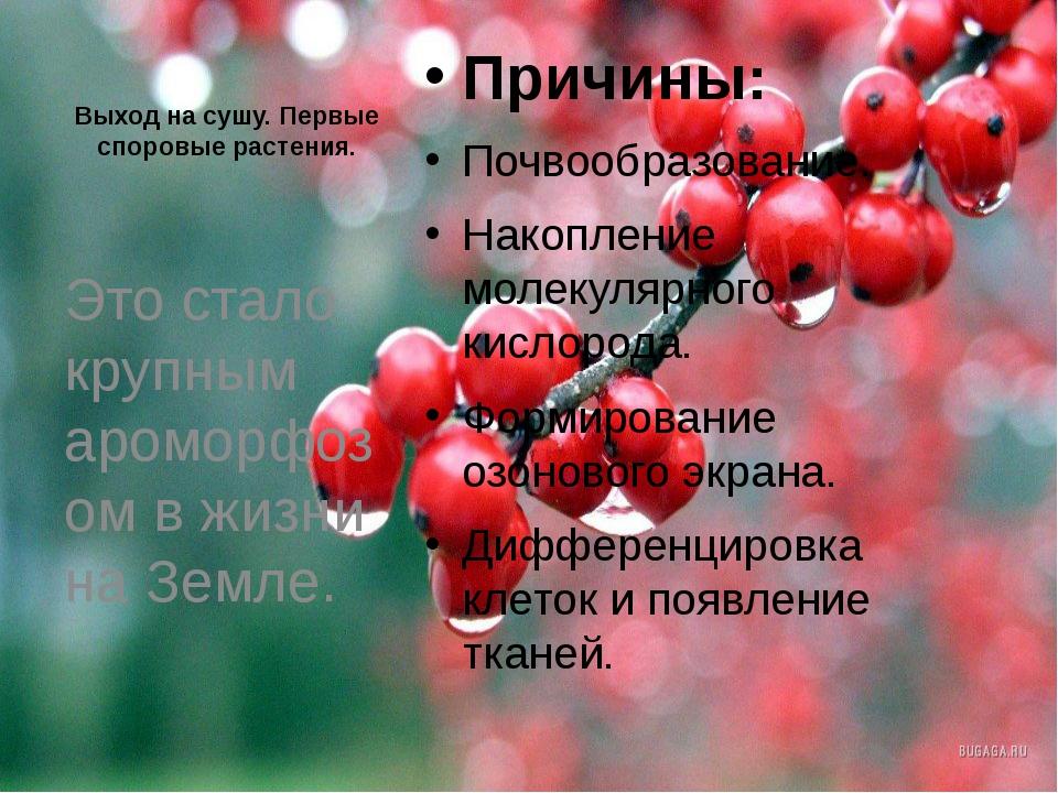 Выход на сушу. Первые споровые растения. Причины: Почвообразование. Накоплени...