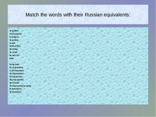 Match the words with their Russian equivalents: to pollute environment a wea