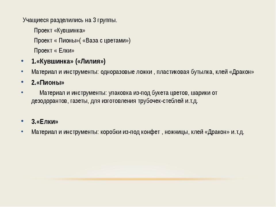 Учащиеся разделились на 3 группы. Проект «Кувшинка» Проект « Пионы»( «Ваза с...