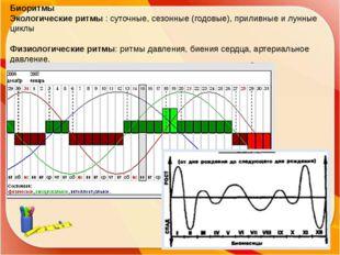 Биоритмы Экологические ритмы : суточные, сезонные (годовые), приливные и лунн