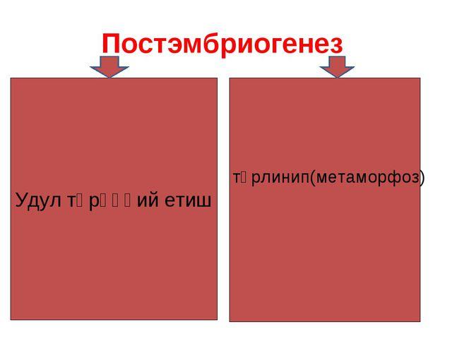 Постэмбриогенез Удул тәрәққий етиш түрлинип(метаморфоз)