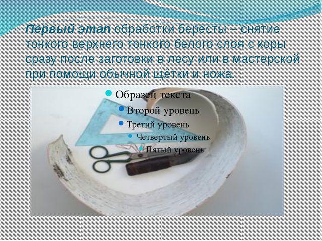 Первый этап обработки бересты – снятие тонкого верхнего тонкого белого слоя с...