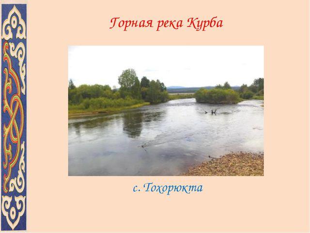 Горная река Курба c. Тохорюкта