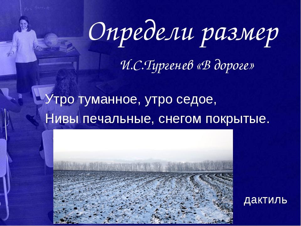 Определи размер И.С.Тургенев «В дороге» Утро туманное, утро седое, Нивы печал...