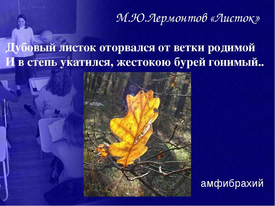 М.Ю.Лермонтов «Листок» Дубовый листок оторвался от ветки родимой И в степь ук...