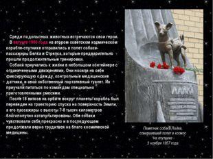 Памятник собаке Лайке, совершившей полет в космос на спутнике 3 ноября 1957 г