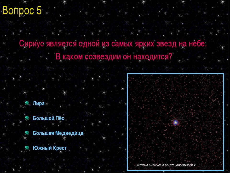 Сириус является одной из самых ярких звезд на небе. В каком созвездии он нахо...