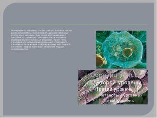 Эксперименты показали, что экстракты стволовых клеток растений способны стим