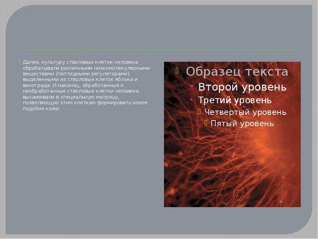 Далее, культуру стволовых клеток человека обрабатывали различными низкомолек...