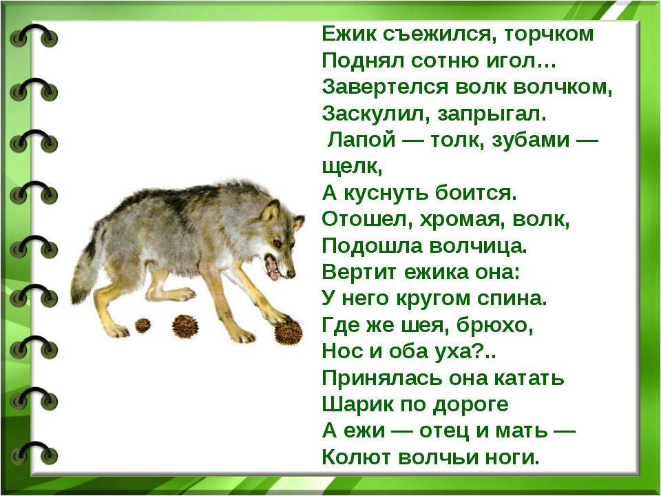 Ежик съежился, торчком Поднял сотню игол… Завертелся волк волчком, Заскулил,...