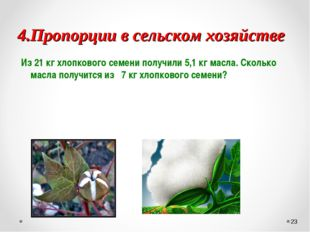 4.Пропорции в сельском хозяйстве Из 21 кг хлопкового семени получили 5,1 кг