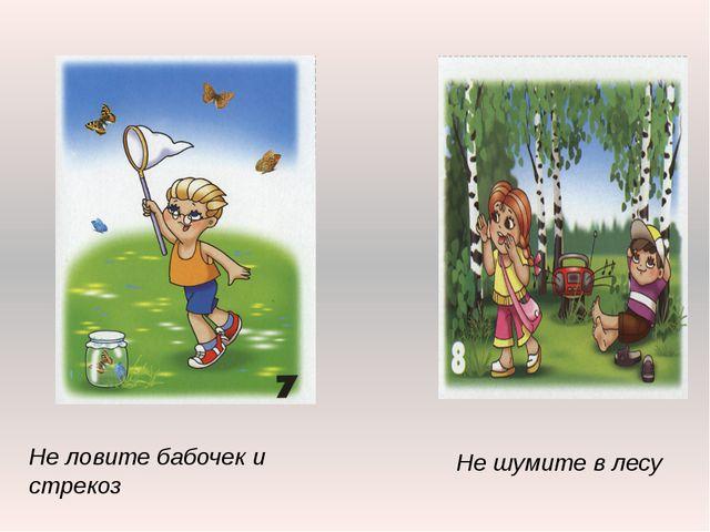 Не ловите бабочек и стрекоз Не шумите в лесу