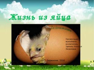 Жизнь из яйца Презентацию выполнила: воспитатель, Эрмель Наталья Яковлевна Бе