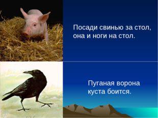 Посади свинью за стол, она и ноги на стол. Пуганая ворона куста боится.