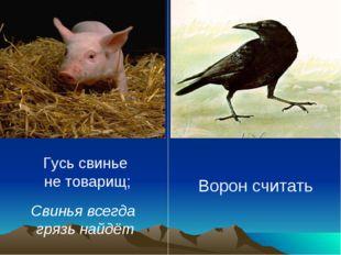 Гусь свинье не товарищ; Свинья всегда грязь найдёт Ворон считать