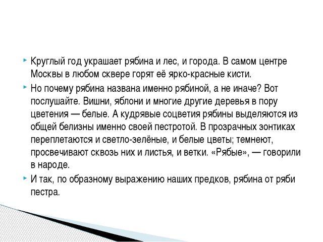 Круглый год украшает рябина и лес, и города. В самом центре Москвы в любом ск...