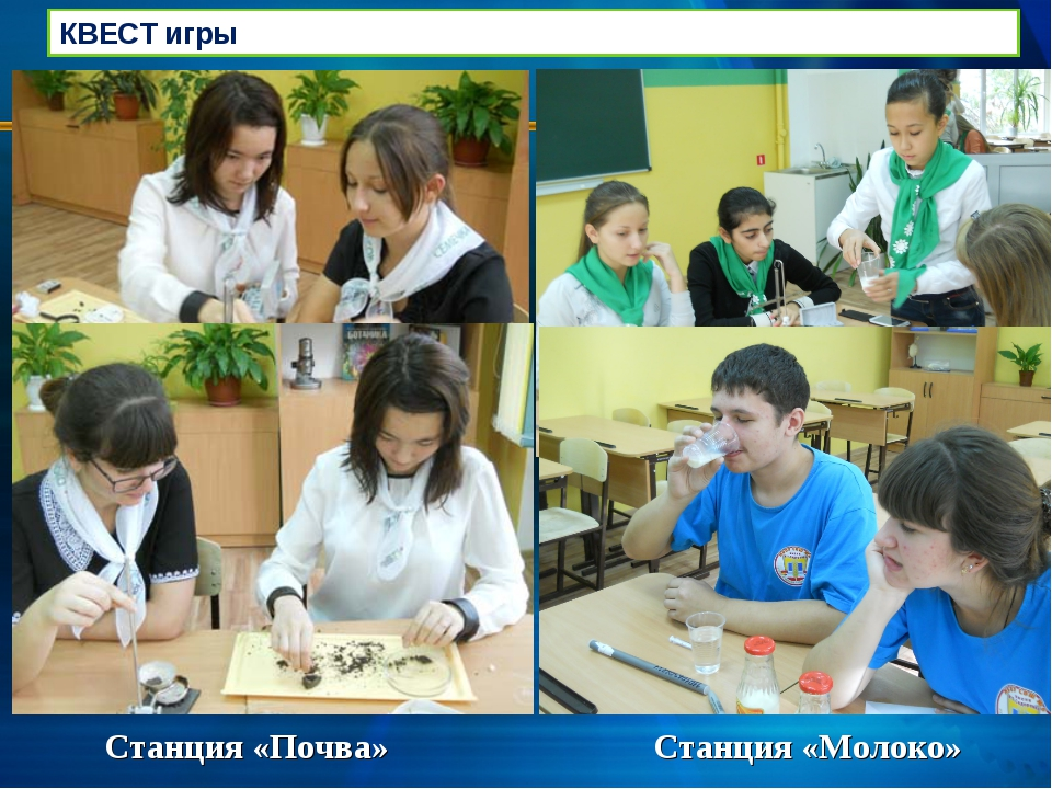 Станция «Почва» Станция «Молоко» КВЕСТ игры