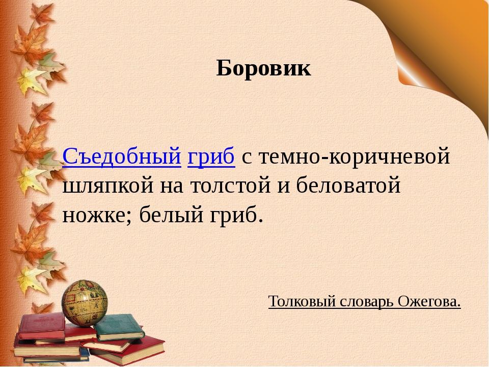 Боровик Съедобныйгрибс темно-коричневой шляпкой на толстой и беловатой ножк...