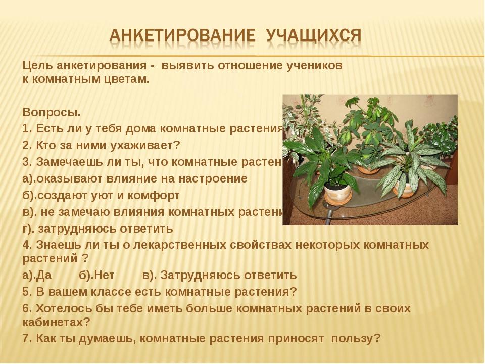 Цель анкетирования - выявить отношение учеников ккомнатнымцветам. Вопросы....