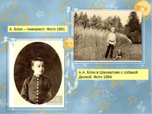 А.А. Блок в Шахматове с собакой Динкой. Фото 1894 А. Блок – гимназист. Фото 1