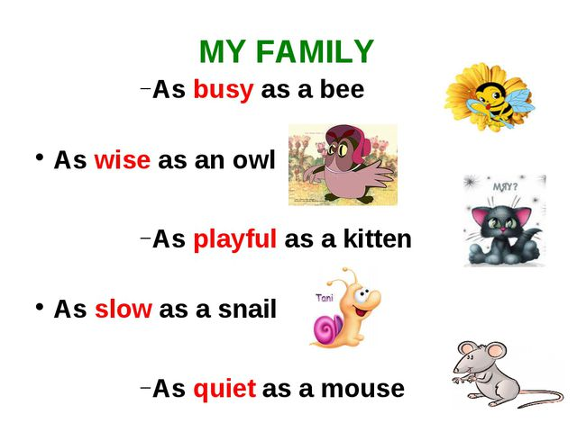 MY FAMILY As busy as a bee As wise as an owl As playful as a kitten As slow a...