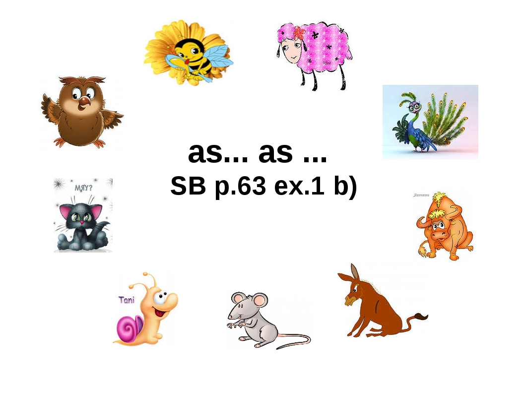 as... as ... SB p.63 ex.1 b)