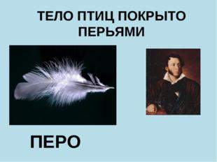 ПЕРО ТЕЛО ПТИЦ ПОКРЫТО ПЕРЬЯМИ