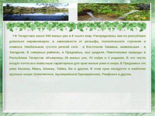 В Татарстане около 500 малых рек и 8 тысяч озер. Распределены они по республи