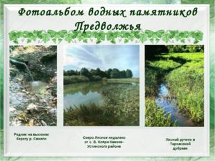 Фотоальбом водных памятников Предволжья Озеро Лесное недалеко от с. Б. Кляри