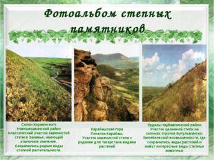 Фотоальбом степных памятников Урдалы тауБавлинский район Участок целинной сте