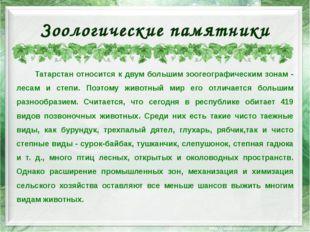 Зоологические памятники Татарстан относится к двум большим зоогеографическим