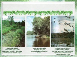 В состав памятника природы входят близлежащие острова на Волге Ильинская бал