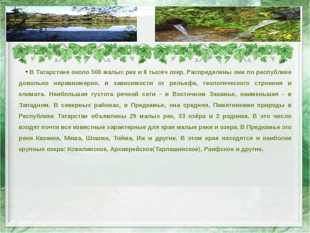 В Татарстане около 500 малых рек и 8 тысяч озер. Распределены они по республи...