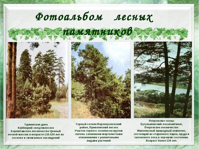 Горный сосняк Верхнеуслонский район, Приволжский лесхоз Участок горного сосн...
