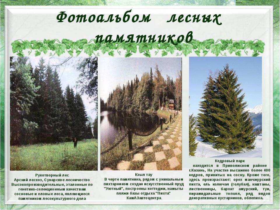 Фотоальбом лесных памятников Рукотворный лес Арский лесхоз, Сунарское лесниче...