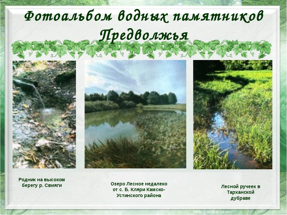 Фотоальбом водных памятников Предволжья Озеро Лесное недалеко от с. Б. Кляри...