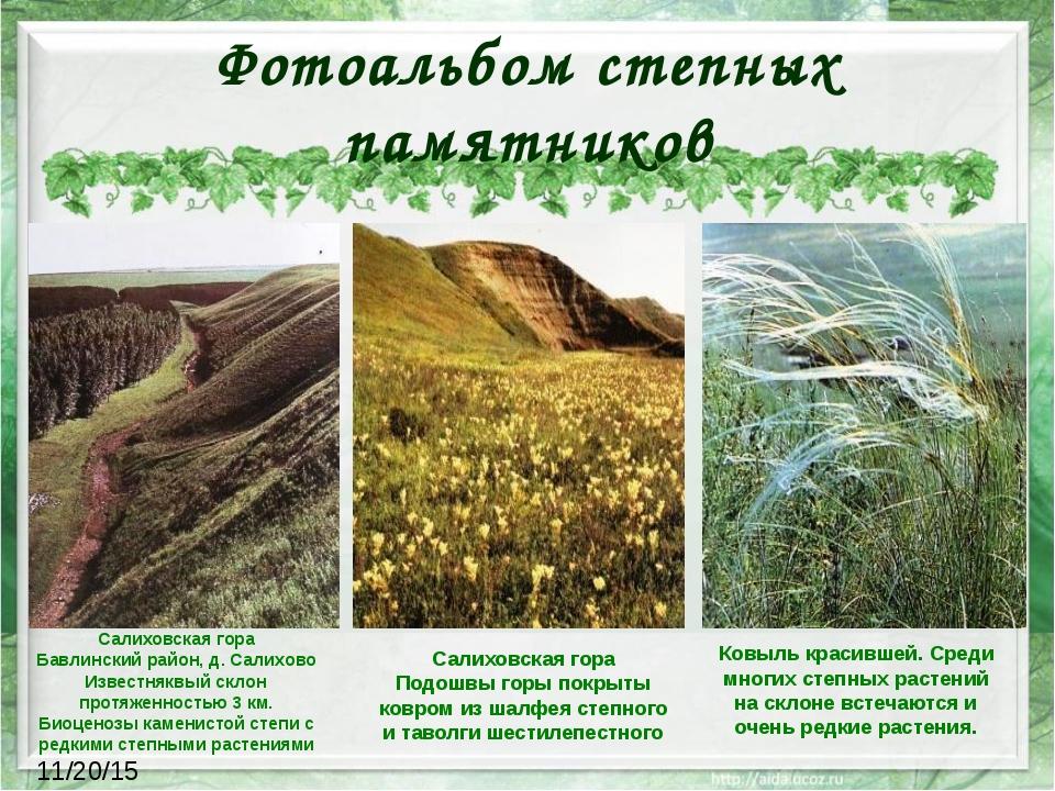 Фотоальбом степных памятников Салиховская гора Бавлинский район, д. Салихово...