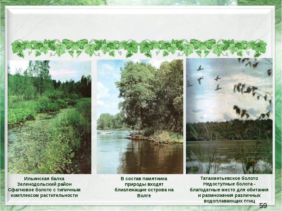 В состав памятника природы входят близлежащие острова на Волге Ильинская бал...
