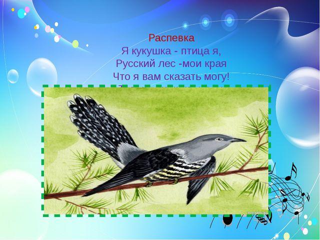 Распевка Я кукушка - птица я, Русский лес -мои края Что я вам сказать могу!...