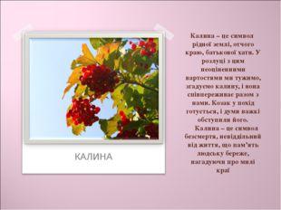 Калина – це символ рідної землі, отчого краю, батькової хати. У розлуці з цим